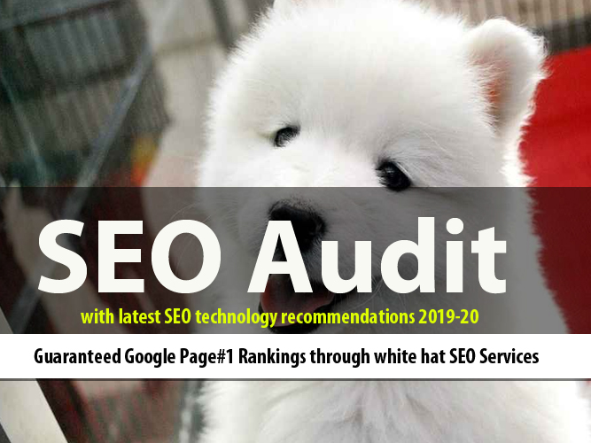 SEO Audit to get Google Page#1 Ranking Solutions