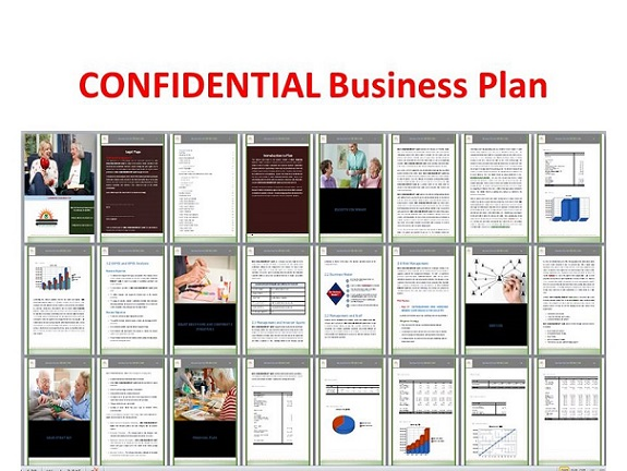 I will create and deliver your fundraising business plan immediately